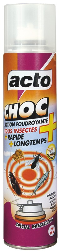 Aérosol Insecticide Choc Tous Insectes 200ml - Acto