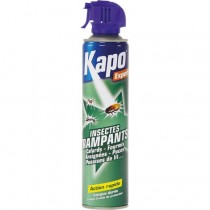 Aérosol Insecticide Anti Insectes Rampants 500 mL - Kapo